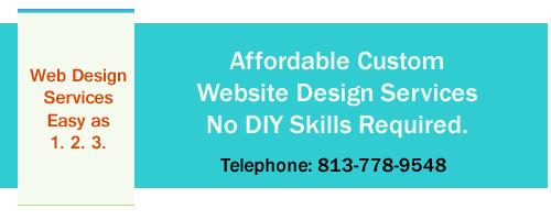 tampa, brandon, land o lakes website design